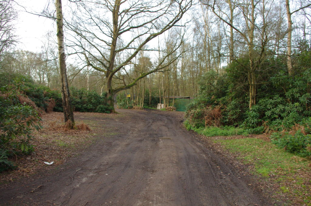 The track to Warren Wood Site - The car parking area the site entrance can be seen in the background.
