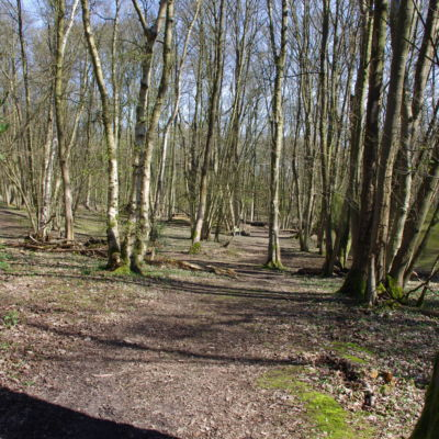 The Trenches  - The Trenches can just be made out in the middle distance.