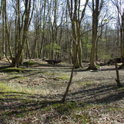 The first view of the trenches themselves.