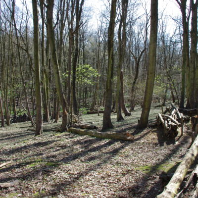 The view behind the trenches down in to the valley.
